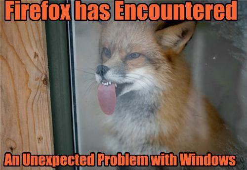 firefox_error